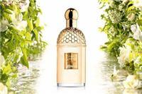 初恋味道的香水品牌分享≤初恋≥娇兰欧珑香气在夏日的清爽绽放