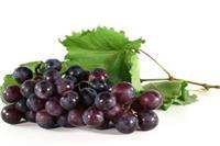 坐月子可以吃什么水果【女人坐月子】女性产后调养的最佳水果《坐月子食谱》