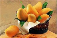 芒果的功效与作用禁忌,食用芒果美容小心上火