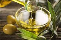 橄榄油的功效与作用 橄榄油有哪些美容方法可以去除妊娠纹
