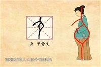 备孕期受孕成功的4个前兆 女性受孕成功后会不会白带增多