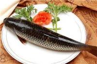好吃不腻的草鱼应该怎么做 草鱼的三种家常做法超下饭