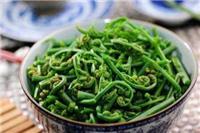蕨菜的功效与作用 蕨菜的危害
