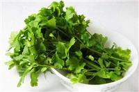 香菜的副作用 食用香菜的几个好处