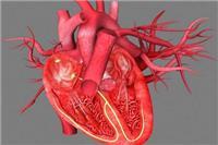 心脏隐隐作痛是怎么回事 女人心脏不好供血不足就吃这4种食物