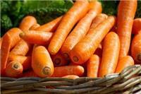 胡萝卜的功效和作用 除了治夜盲还有这些功效