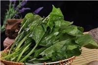 菠菜怎么做才好吃?菠菜的最简单家常做法