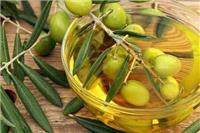 橄榄油有什么功效与作用 盘点橄榄油的美容方法
